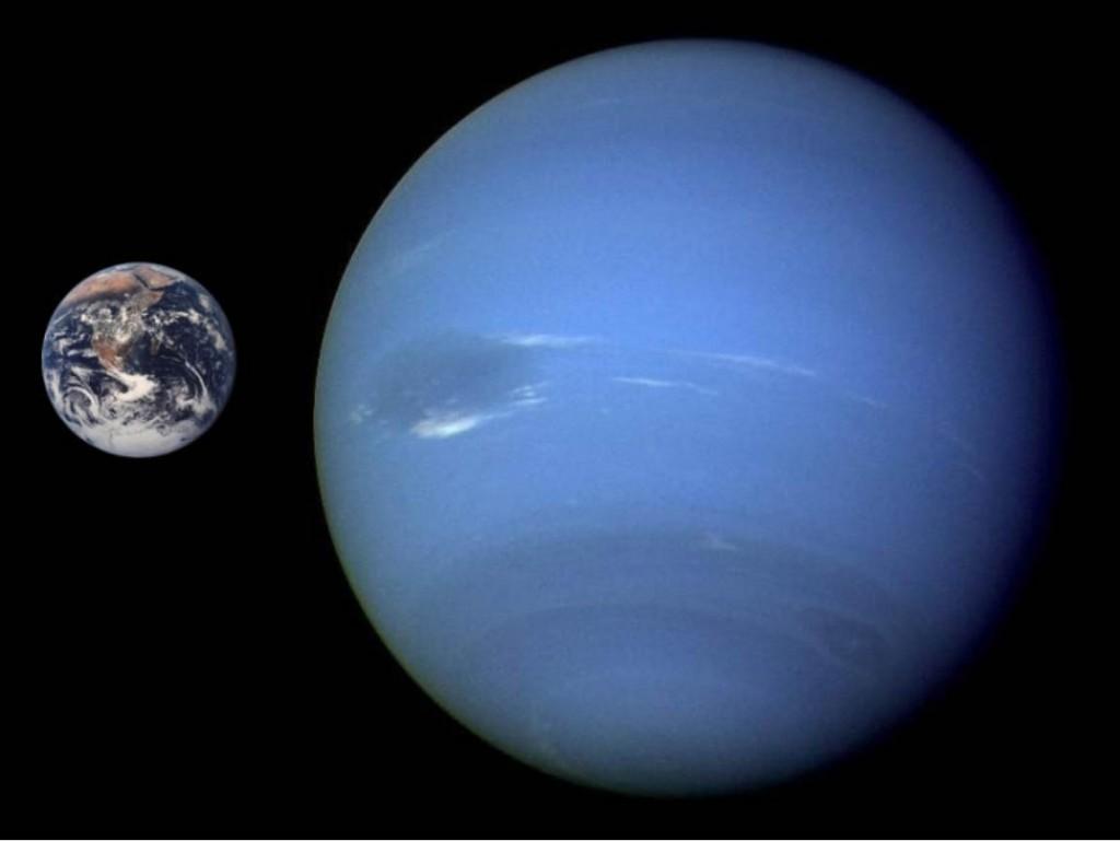 Neptune-l-1