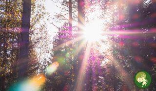 Равноденствие и солнцестояние