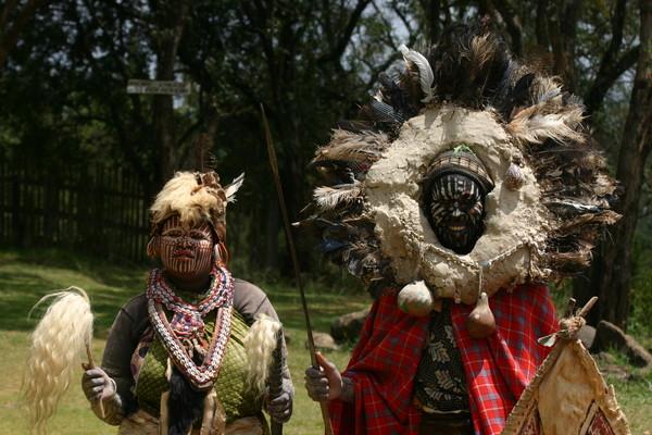 африканские шаманы, лечение змеиных укусов,