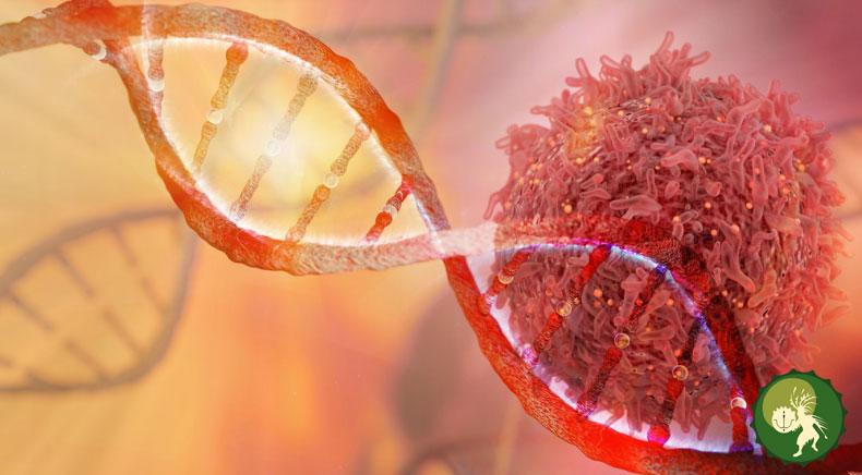 причины возникновения рака